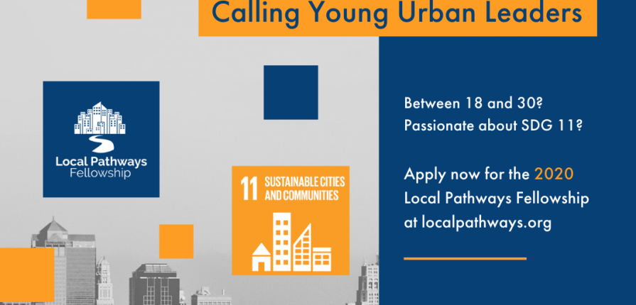 SDSN Youth Local Pathways fellowship for young urban leaders 2020.mopportunities.com