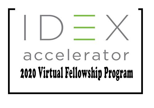 IDEX-Virtual-Fellowship-Program_mopportunities.com