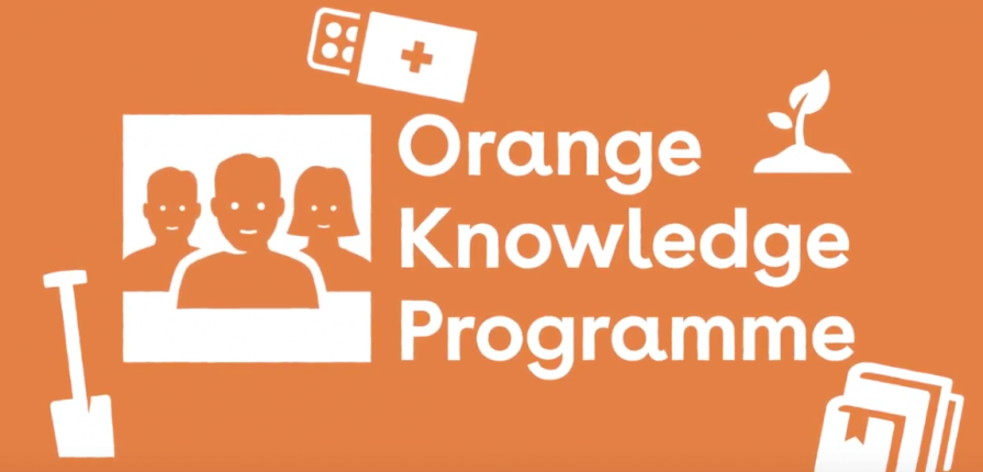 Orange Knowledge Programme- Short Courses and Masters Scholarship 2021.mopportunities.com