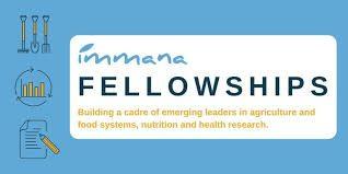 https://www.google.com/imgres?imgurl=https%3A%2F%2Fwww.opportunitiesforafricans.com%2Fwp-content%2Fuploads%2F2020%2F10%2Fimmana-fellowship.jpg&imgrefurl=https%3A%2F%2Fwww.opportunitiesforafricans.com%2Fimmana-fellowships-2021-2022%2F&tbnid=JBHgMpgeGO1F0M&vet=12ahUKEwjCirLDv5_sAhUJQBQKHc4yA3YQMygAegUIARCCAQ..i&docid=7wPSyVR3KHBAzM&w=768&h=384&q=IMMANA%20Fellowships%202021%2F2022%20for%20emerging%20leaders%20in%20agriculture%2C%20nutrition%2C%20and%20health%20research&ved=2ahUKEwjCirLDv5_sAhUJQBQKHc4yA3YQMygAegUIARCCAQ_mopportunities.com